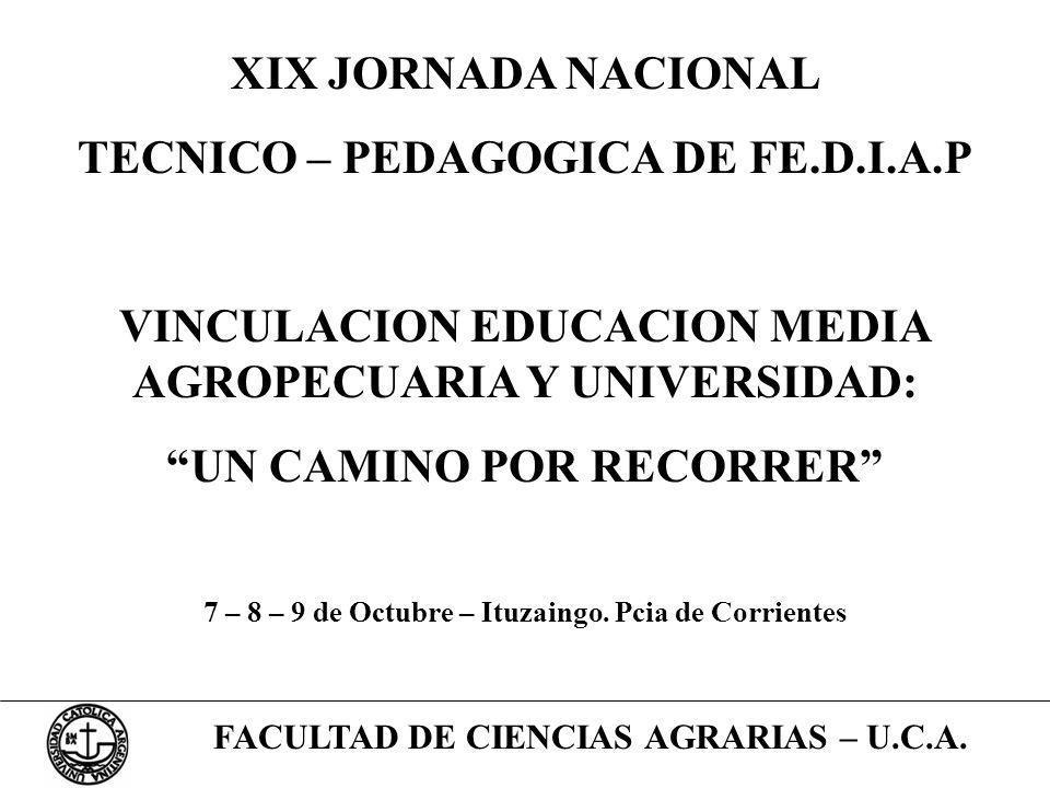 TECNICO – PEDAGOGICA DE FE.D.I.A.P