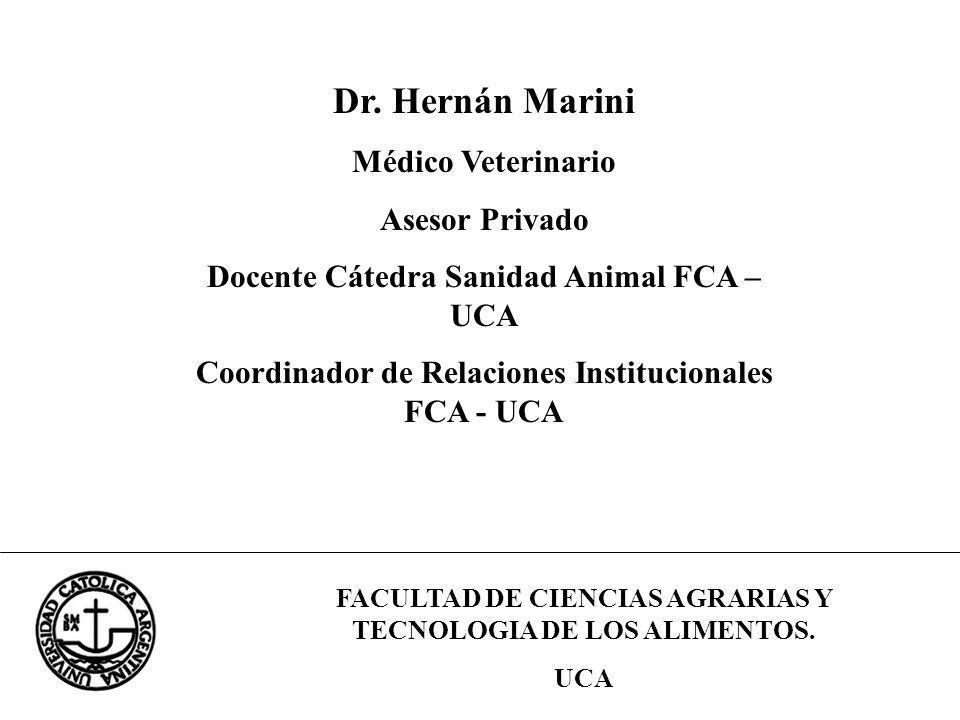 Dr. Hernán Marini Médico Veterinario Asesor Privado