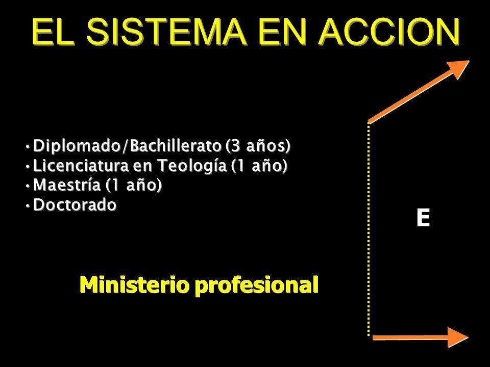 Ministerio profesional