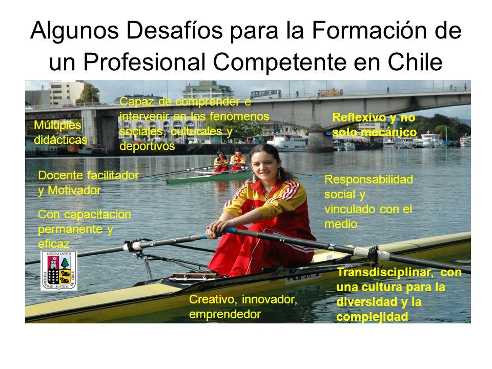 Algunos Desafíos para la Formación de un Profesional Competente en Chile