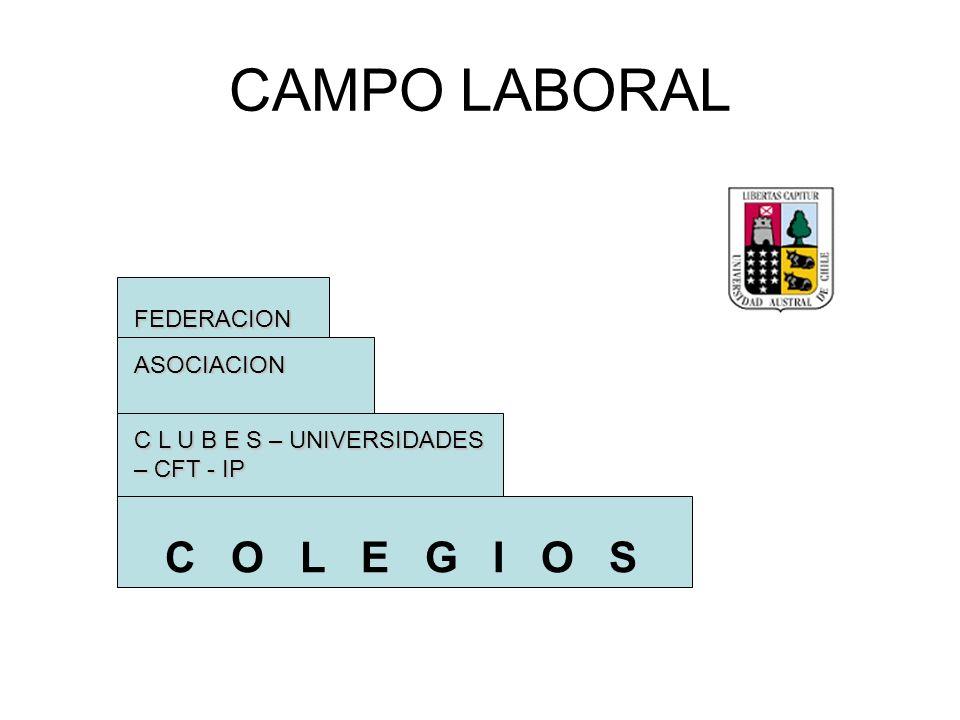 CAMPO LABORAL C O L E G I O S FEDERACION ASOCIACION