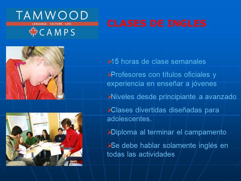 CLASES DE INGLES 15 horas de clase semanales