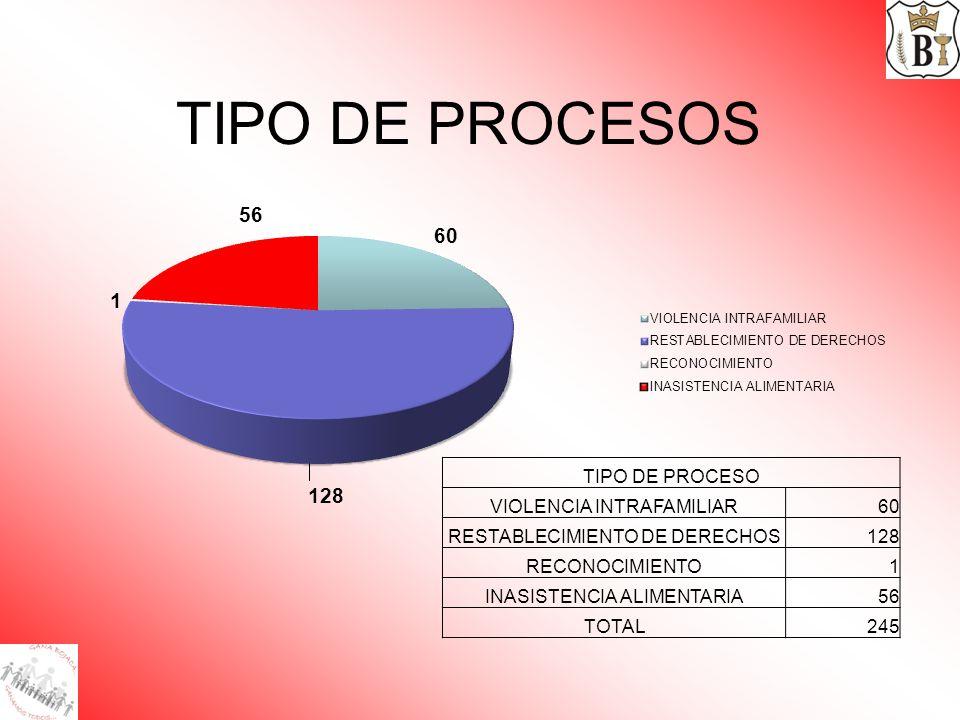 TIPO DE PROCESOS TIPO DE PROCESO VIOLENCIA INTRAFAMILIAR 60