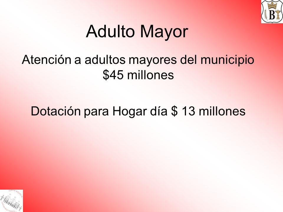 Adulto Mayor Atención a adultos mayores del municipio $45 millones