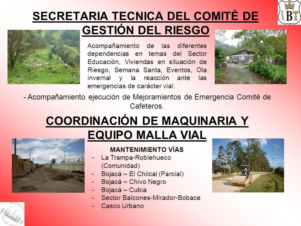 SECRETARIA TECNICA DEL COMITÉ DE GESTIÓN DEL RIESGO