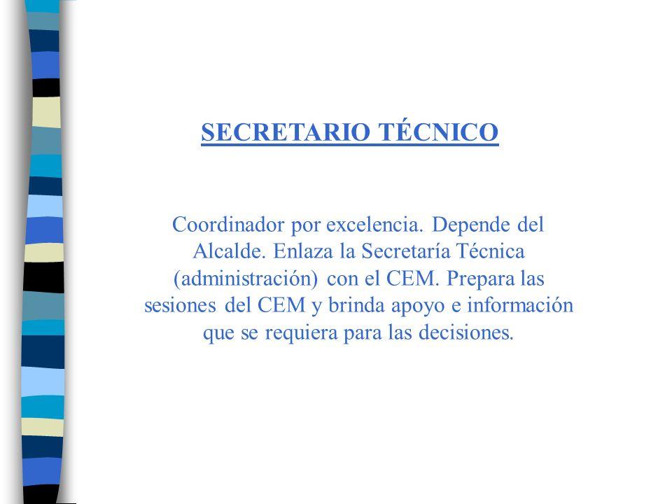 SECRETARIO TÉCNICO