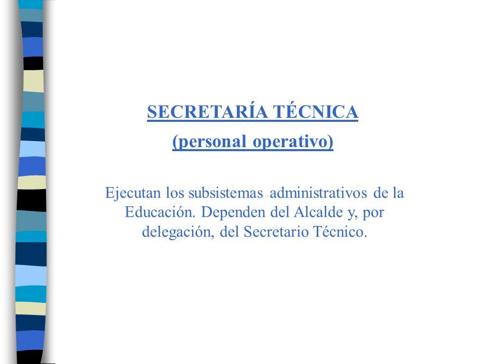 SECRETARÍA TÉCNICA (personal operativo)