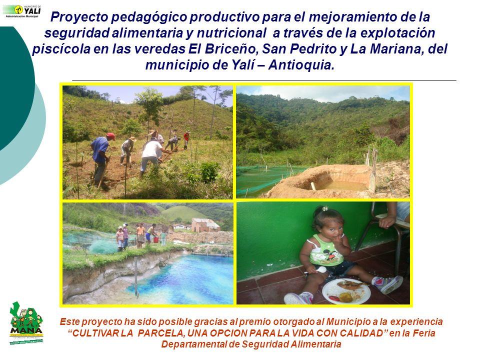 Proyecto pedagógico productivo para el mejoramiento de la seguridad alimentaria y nutricional a través de la explotación piscícola en las veredas El Briceño, San Pedrito y La Mariana, del municipio de Yalí – Antioquia.