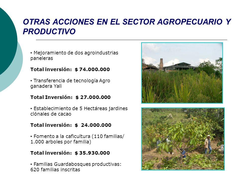 OTRAS ACCIONES EN EL SECTOR AGROPECUARIO Y PRODUCTIVO