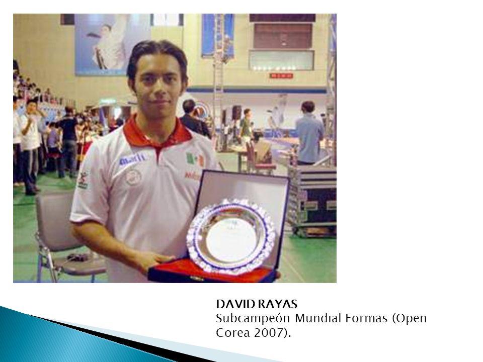 DAVID RAYAS Subcampeón Mundial Formas (Open Corea 2007).