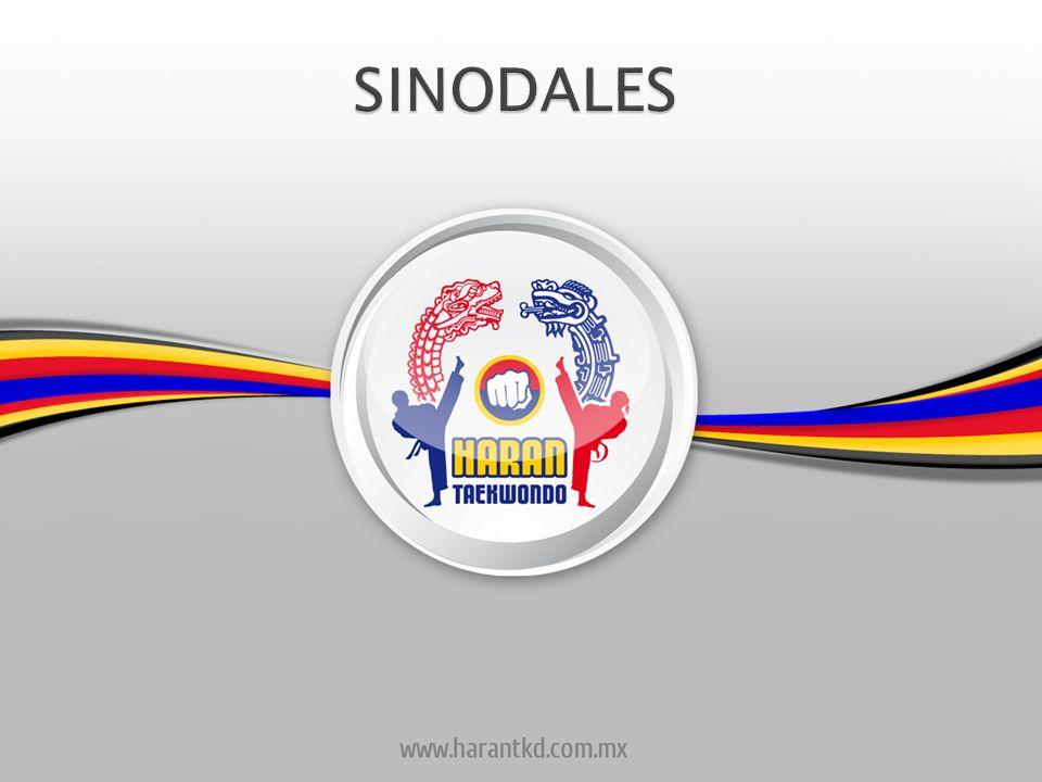 SINODALES