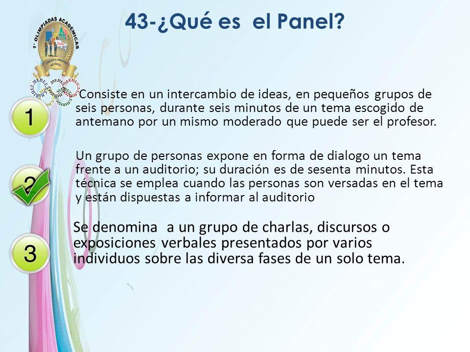 43-¿Qué es el Panel