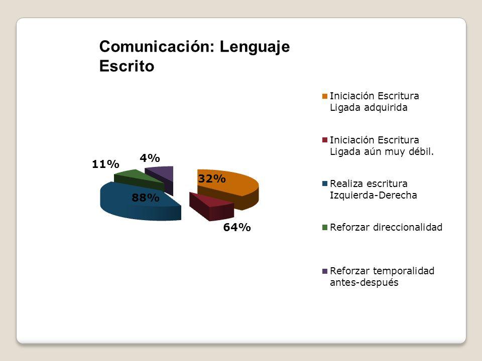 Comunicación: Lenguaje Escrito