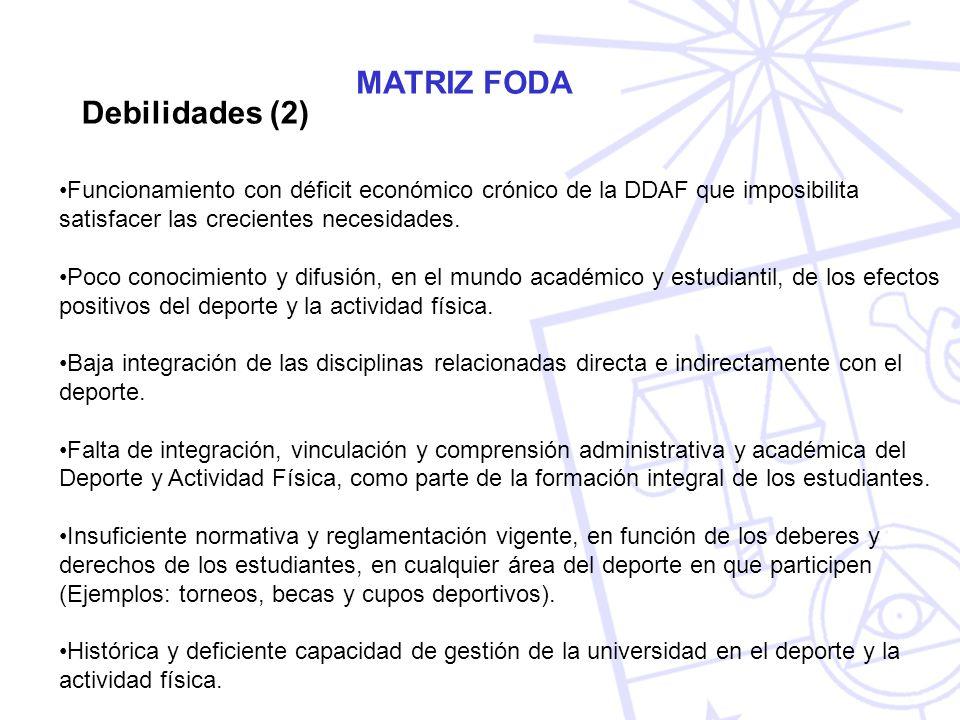 MATRIZ FODA Debilidades (2)