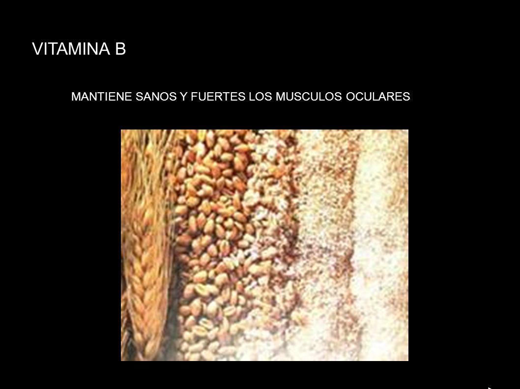 VITAMINA B MANTIENE SANOS Y FUERTES LOS MUSCULOS OCULARES