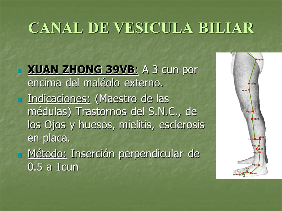 CANAL DE VESICULA BILIAR