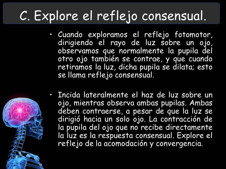 C. Explore el reflejo consensual.