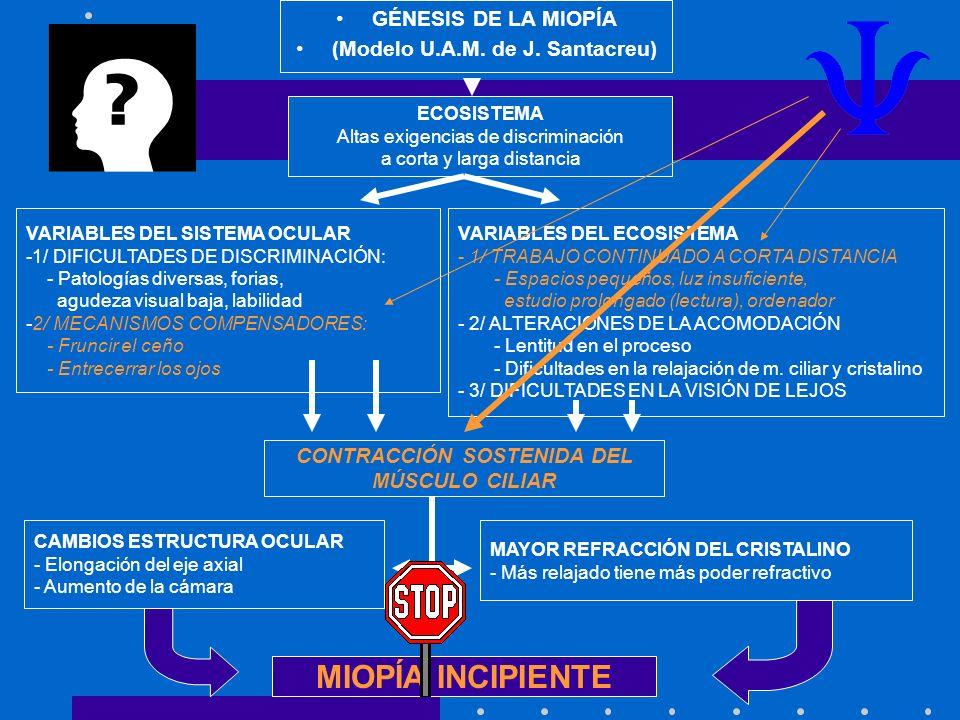 (Modelo U.A.M. de J. Santacreu) CONTRACCIÓN SOSTENIDA DEL