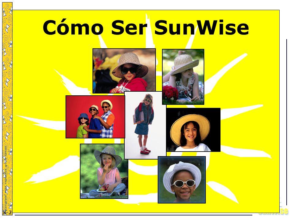 Cómo Ser SunWise