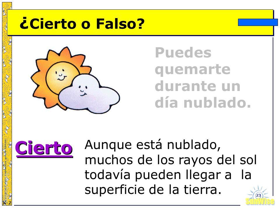 Cierto ¿Cierto o Falso Puedes quemarte durante un día nublado.