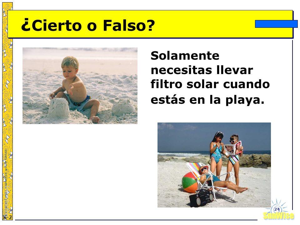 ¿Cierto o Falso Solamente necesitas llevar filtro solar cuando estás en la playa. Introduction
