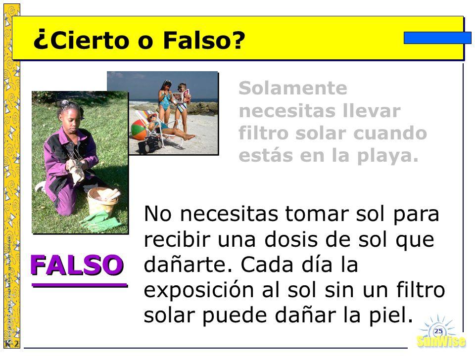 ¿Cierto o Falso Solamente necesitas llevar filtro solar cuando estás en la playa.