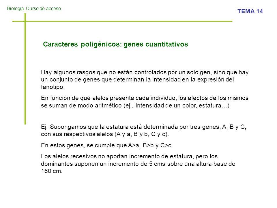 Caracteres poligénicos: genes cuantitativos