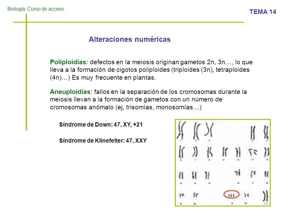Alteraciones numéricas