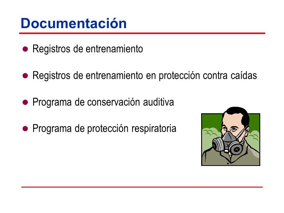 Documentación Registros de entrenamiento