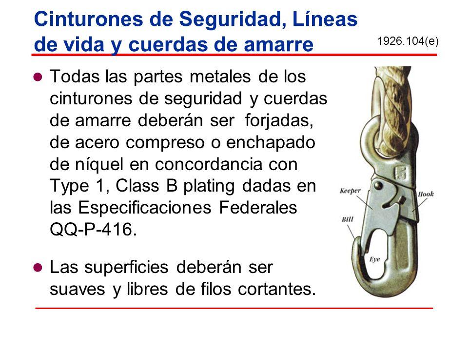 Cinturones de Seguridad, Líneas de vida y cuerdas de amarre