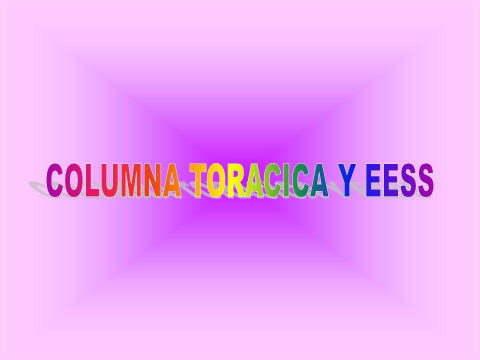 COLUMNA TORACICA Y EESS