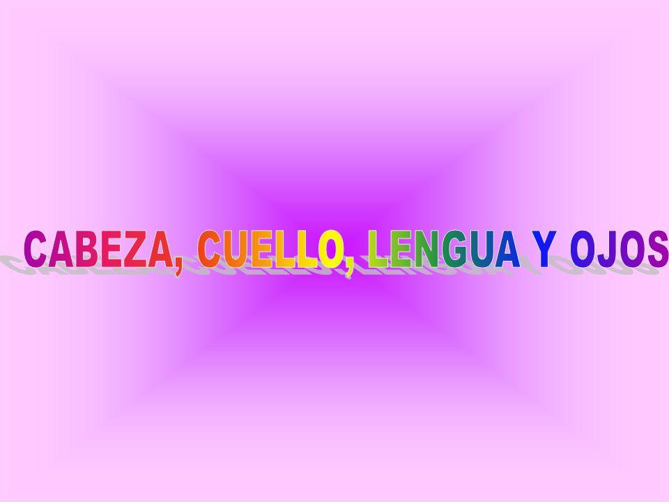 CABEZA, CUELLO, LENGUA Y OJOS