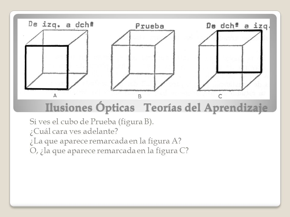 Ilusiones Ópticas Teorías del Aprendizaje
