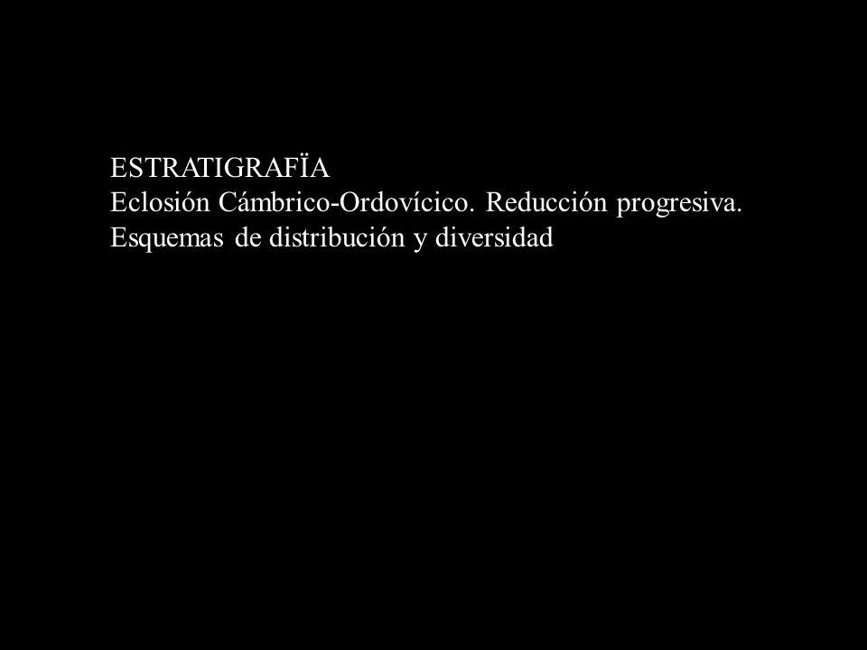 ESTRATIGRAFÏA Eclosión Cámbrico-Ordovícico. Reducción progresiva. Esquemas de distribución y diversidad.