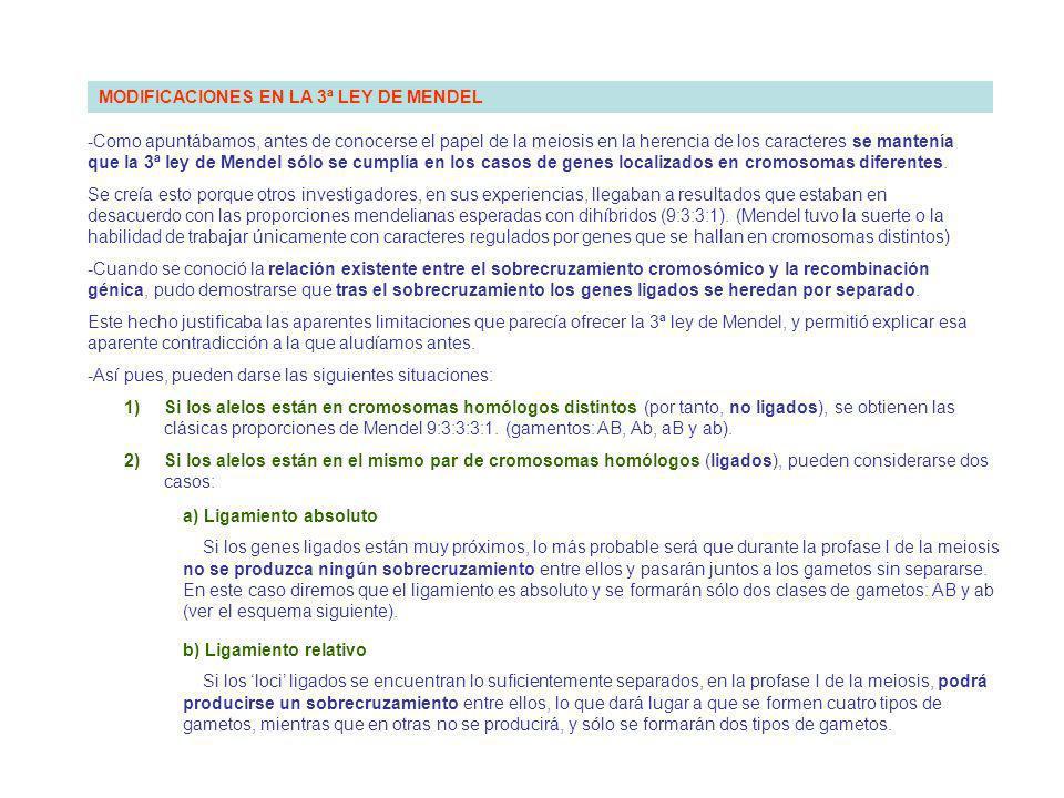 MODIFICACIONES EN LA 3ª LEY DE MENDEL