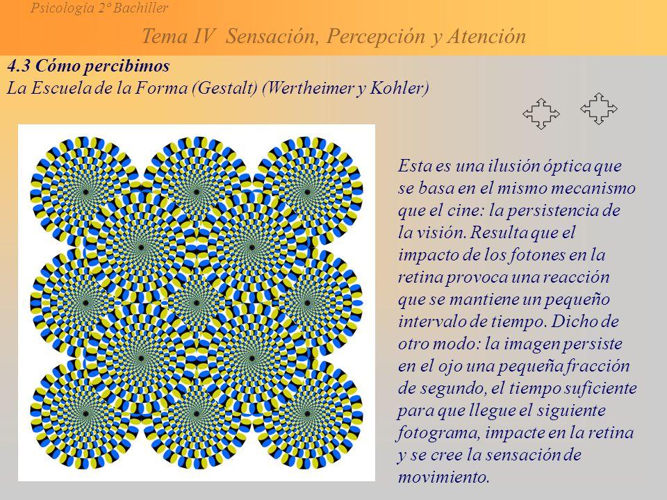 4.3 Cómo percibimos La Escuela de la Forma (Gestalt) (Wertheimer y Kohler)