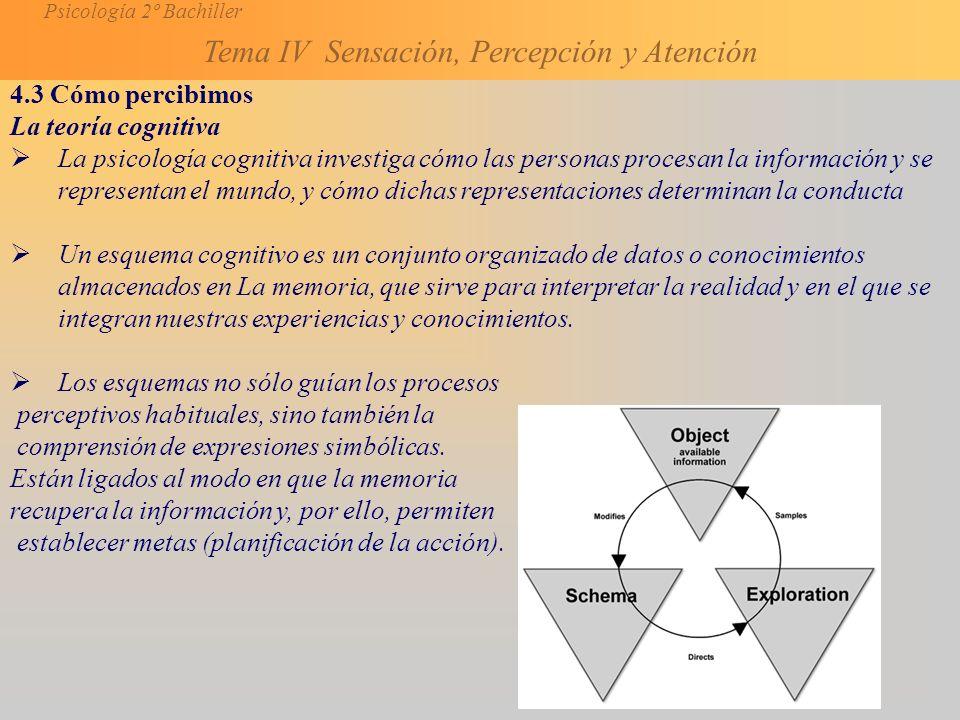 4.3 Cómo percibimos La teoría cognitiva.