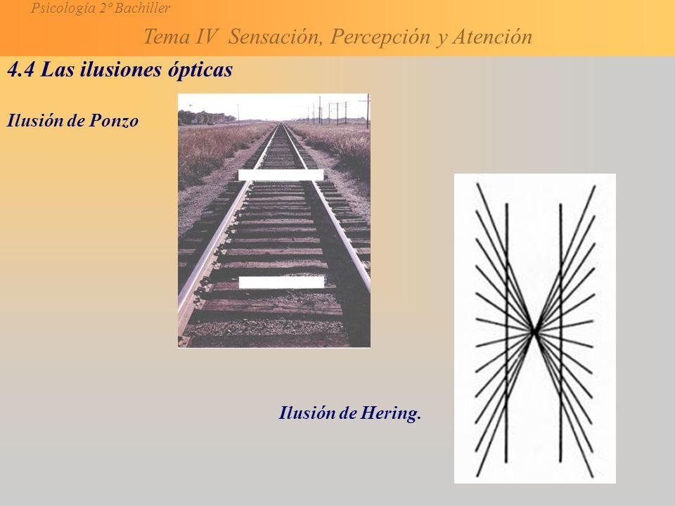 4.4 Las ilusiones ópticas Ilusión de Ponzo Ilusión de Hering.