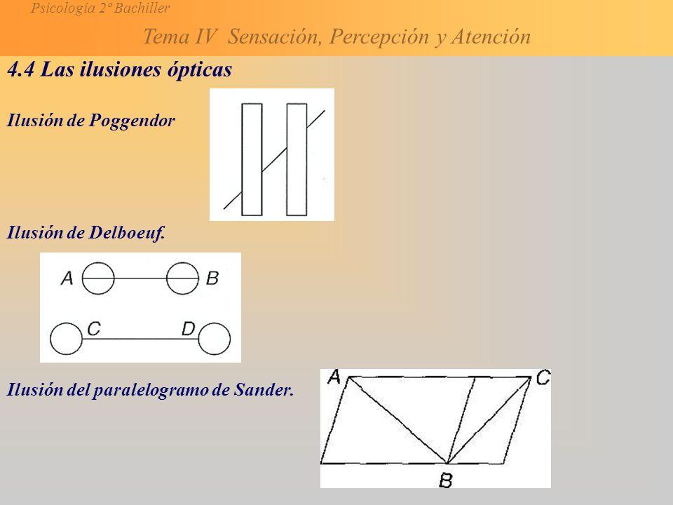 4.4 Las ilusiones ópticas Ilusión de Poggendor Ilusión de Delboeuf.