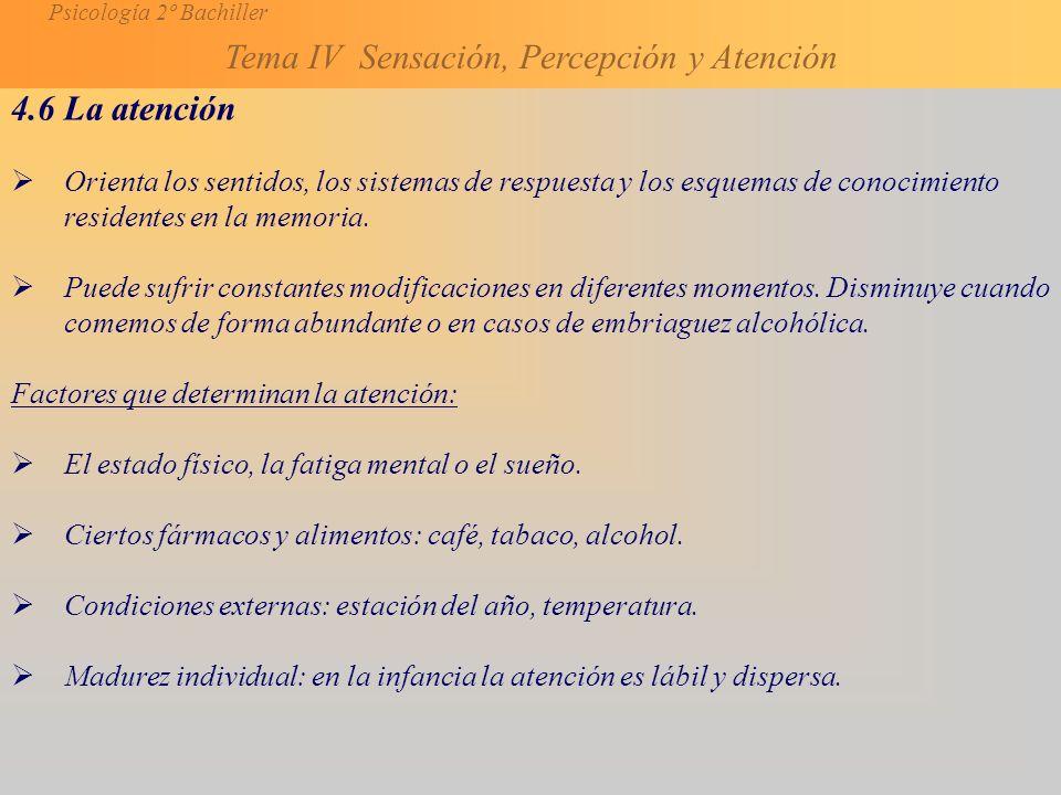 4.6 La atención Orienta los sentidos, los sistemas de respuesta y los esquemas de conocimiento residentes en la memoria.