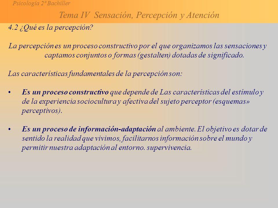 4.2 ¿Qué es la percepción