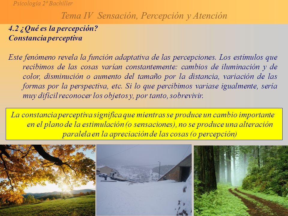 4.2 ¿Qué es la percepción Constancia perceptiva.