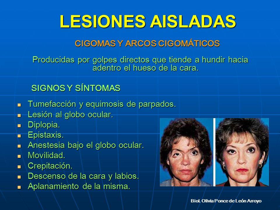 Biol. Olivia Ponce de León Arroyo