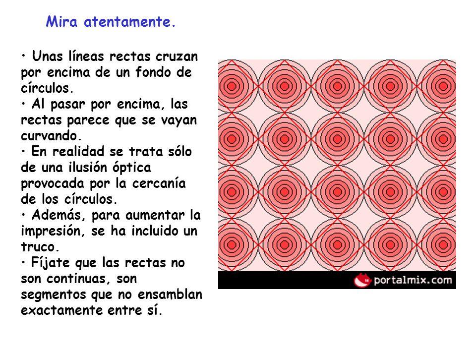 Mira atentamente. Unas líneas rectas cruzan por encima de un fondo de círculos. Al pasar por encima, las rectas parece que se vayan curvando.