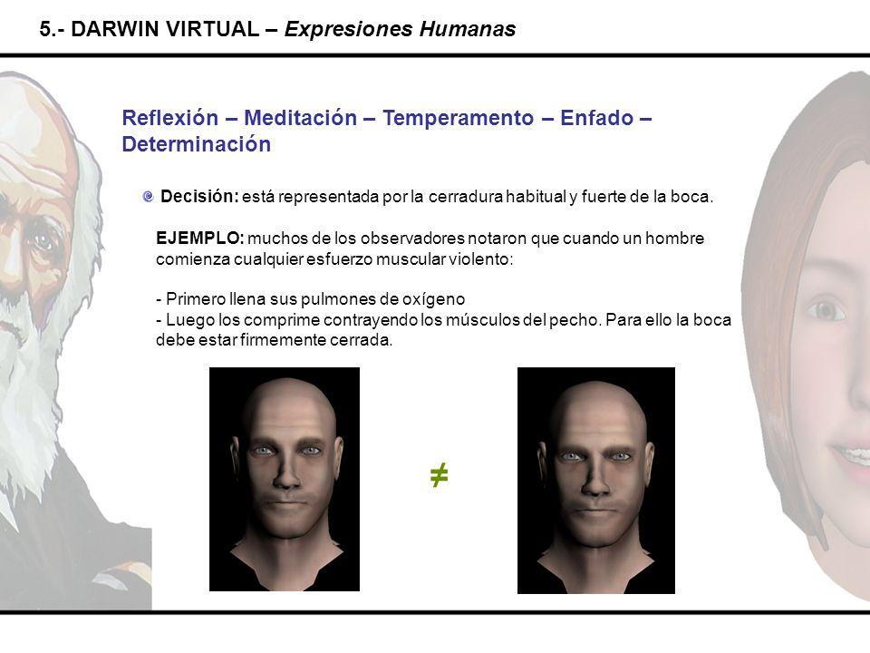 ≠ 5.- DARWIN VIRTUAL – Expresiones Humanas