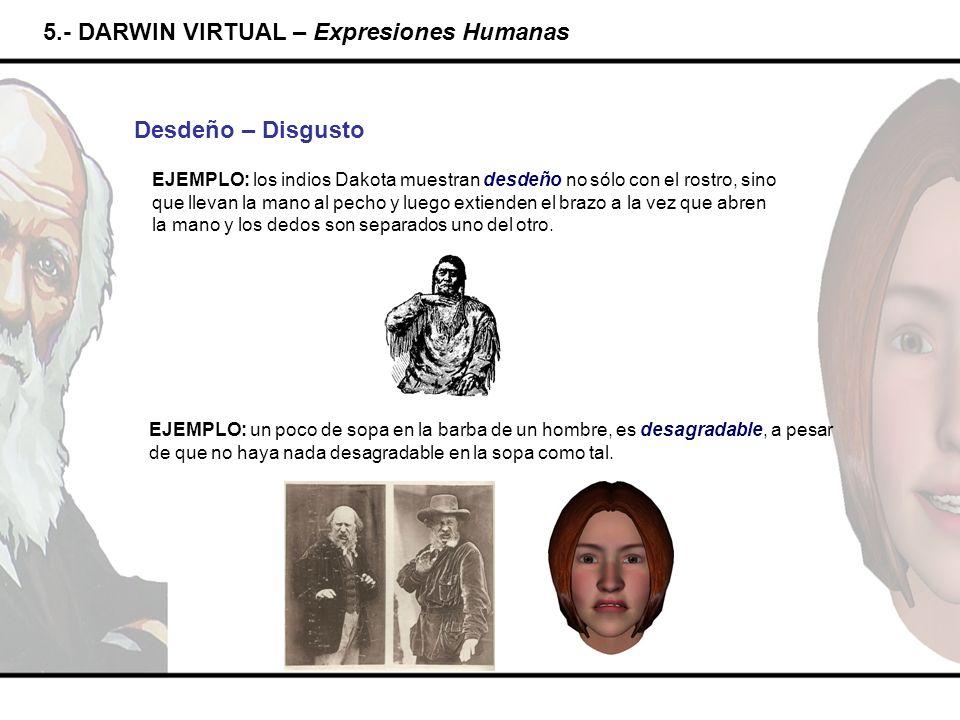 5.- DARWIN VIRTUAL – Expresiones Humanas
