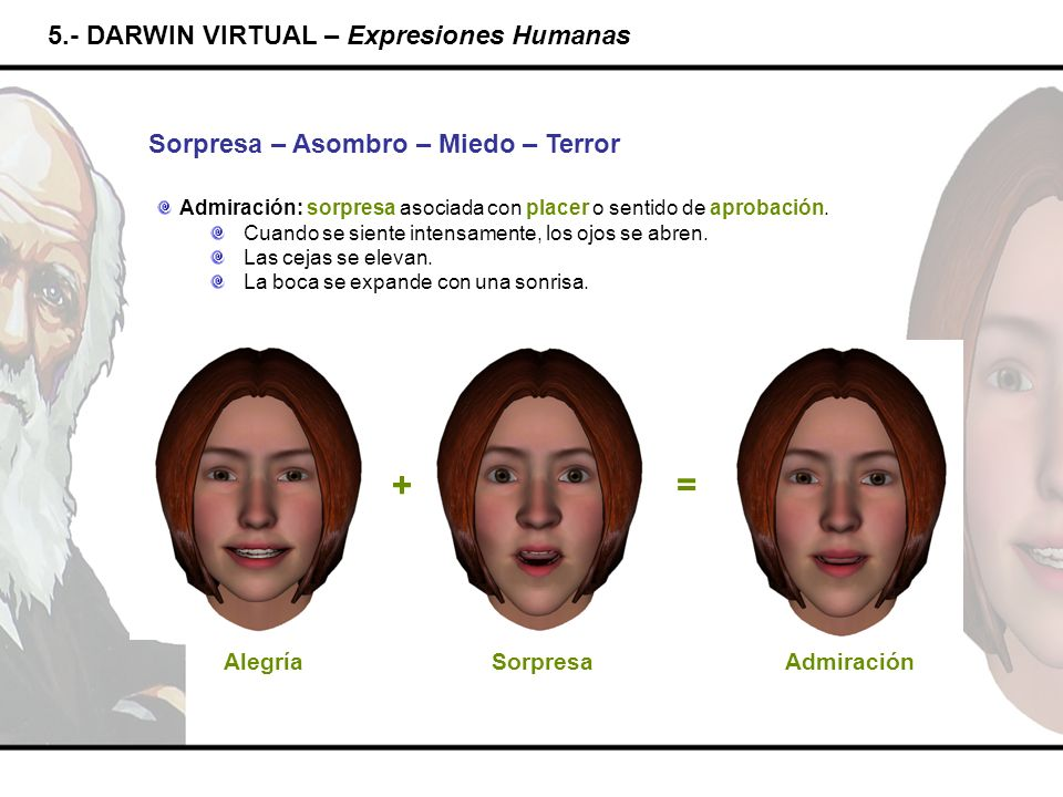 + = 5.- DARWIN VIRTUAL – Expresiones Humanas