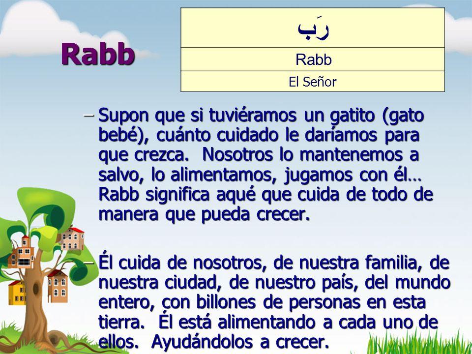رَب Rabb. El Señor. Rabb.
