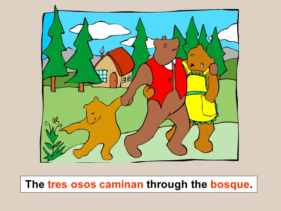 The tres osos caminan through the bosque.