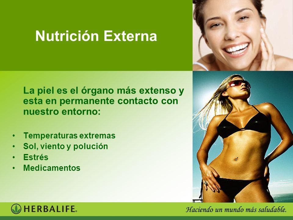Nutrición Externa La piel es el órgano más extenso y esta en permanente contacto con nuestro entorno:
